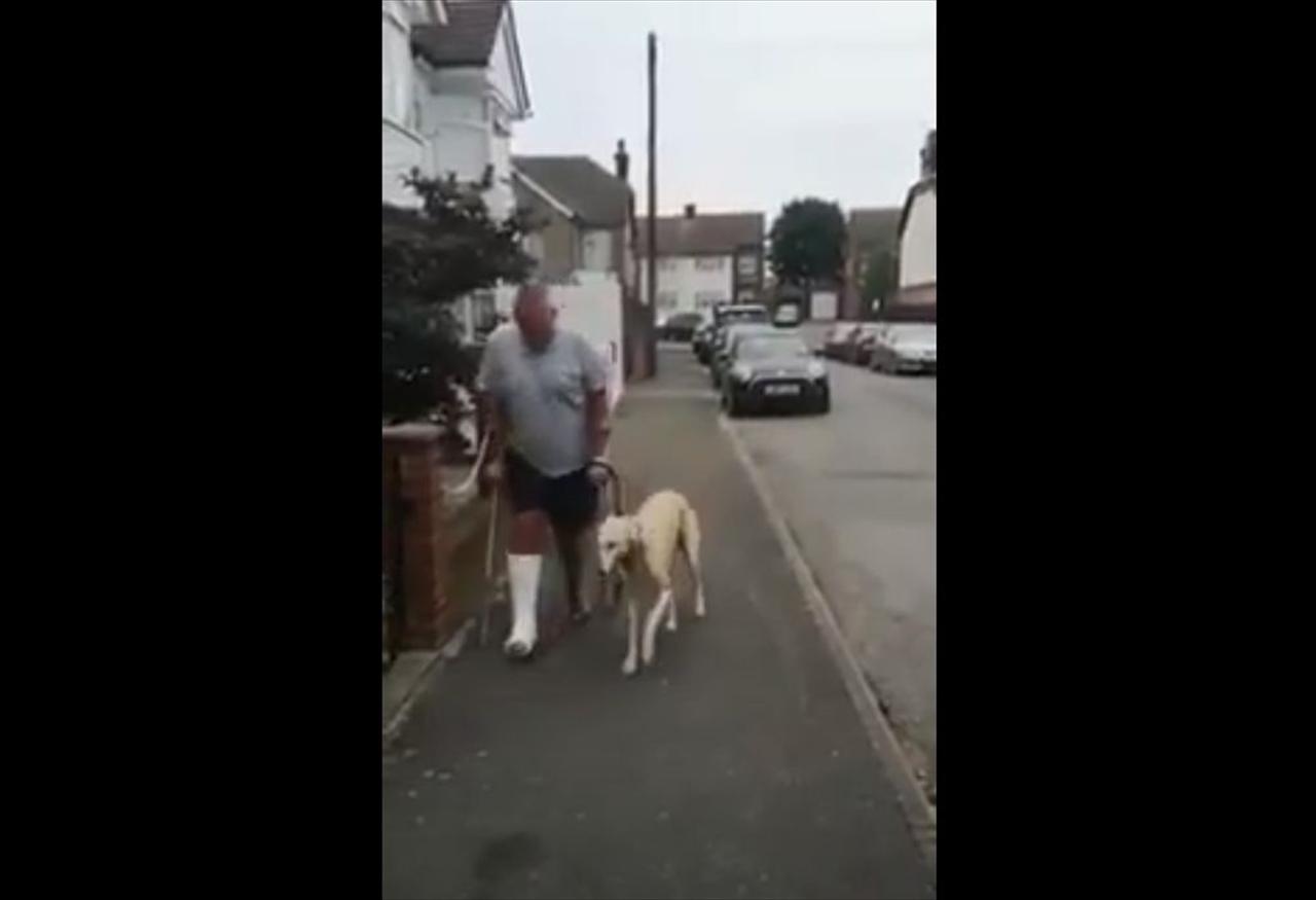 異常もないのに足を引きずりながら飼い主と一緒に歩くワンコ・・・その理由に感動!