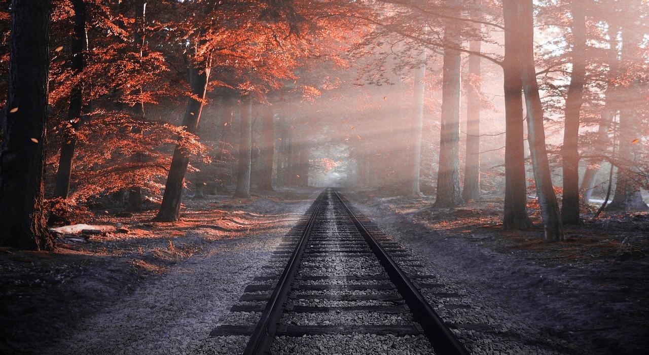 秋のはじめを指す「桐一葉」、もう一つの隠された意味が深い!