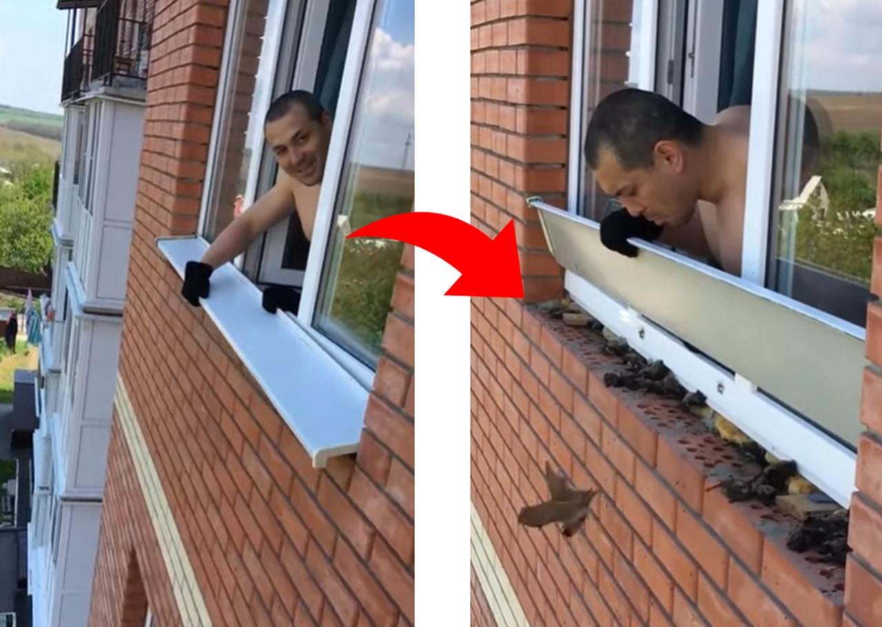 窓サッシの一部を外すと....そこから出て来たまさかの生物とは!?