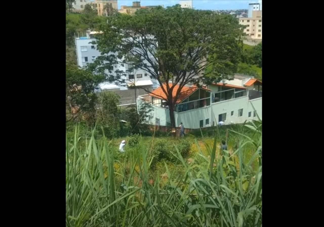 何かが起きる予感がして、木を伐採する様子を撮影していたら・・・本当にアクシデント発生!