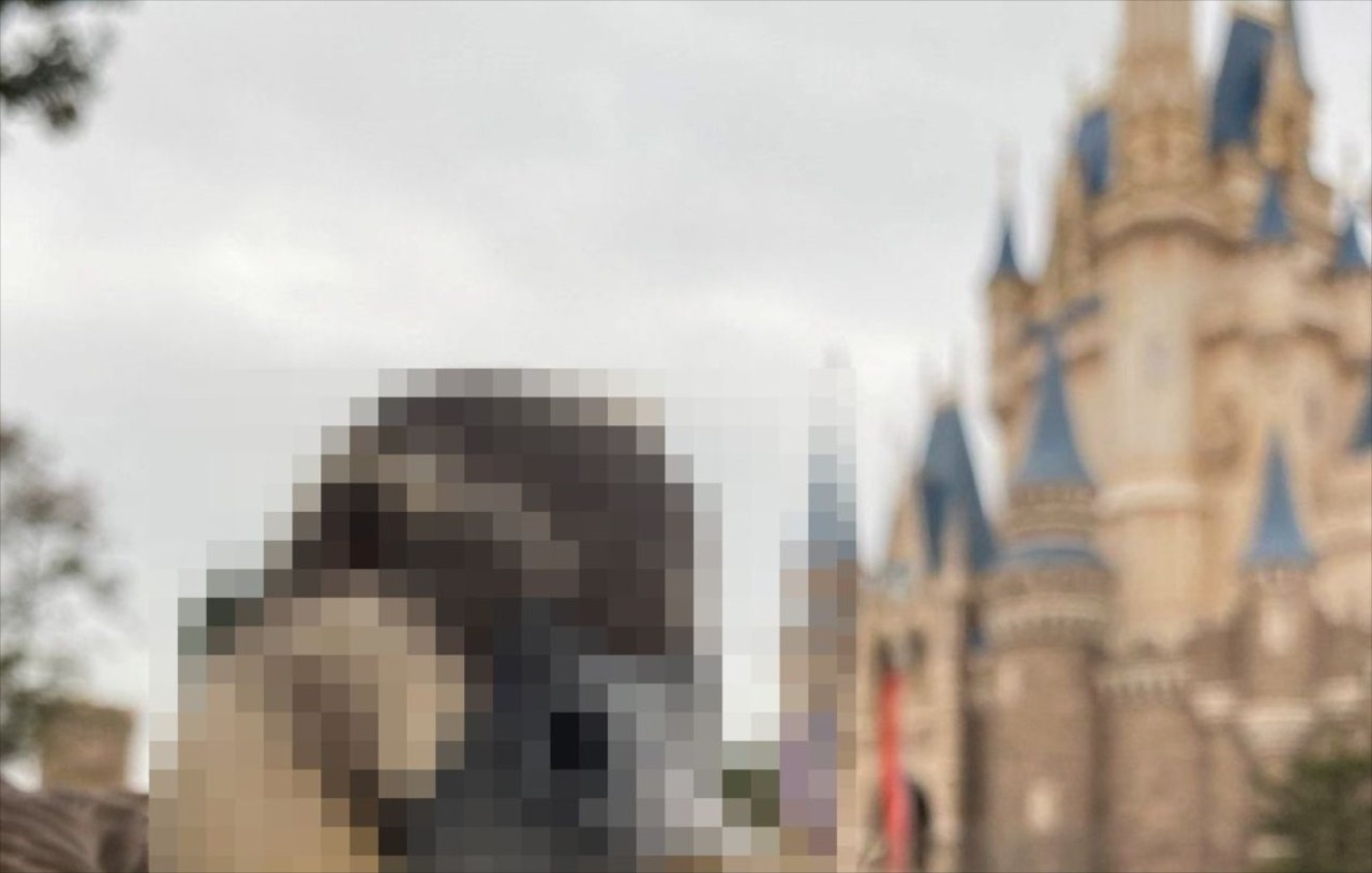 ディズニーランドでシンデレラ城を撮ろうとすると・・・とあるものが高確率でフレームインしてくる(笑)