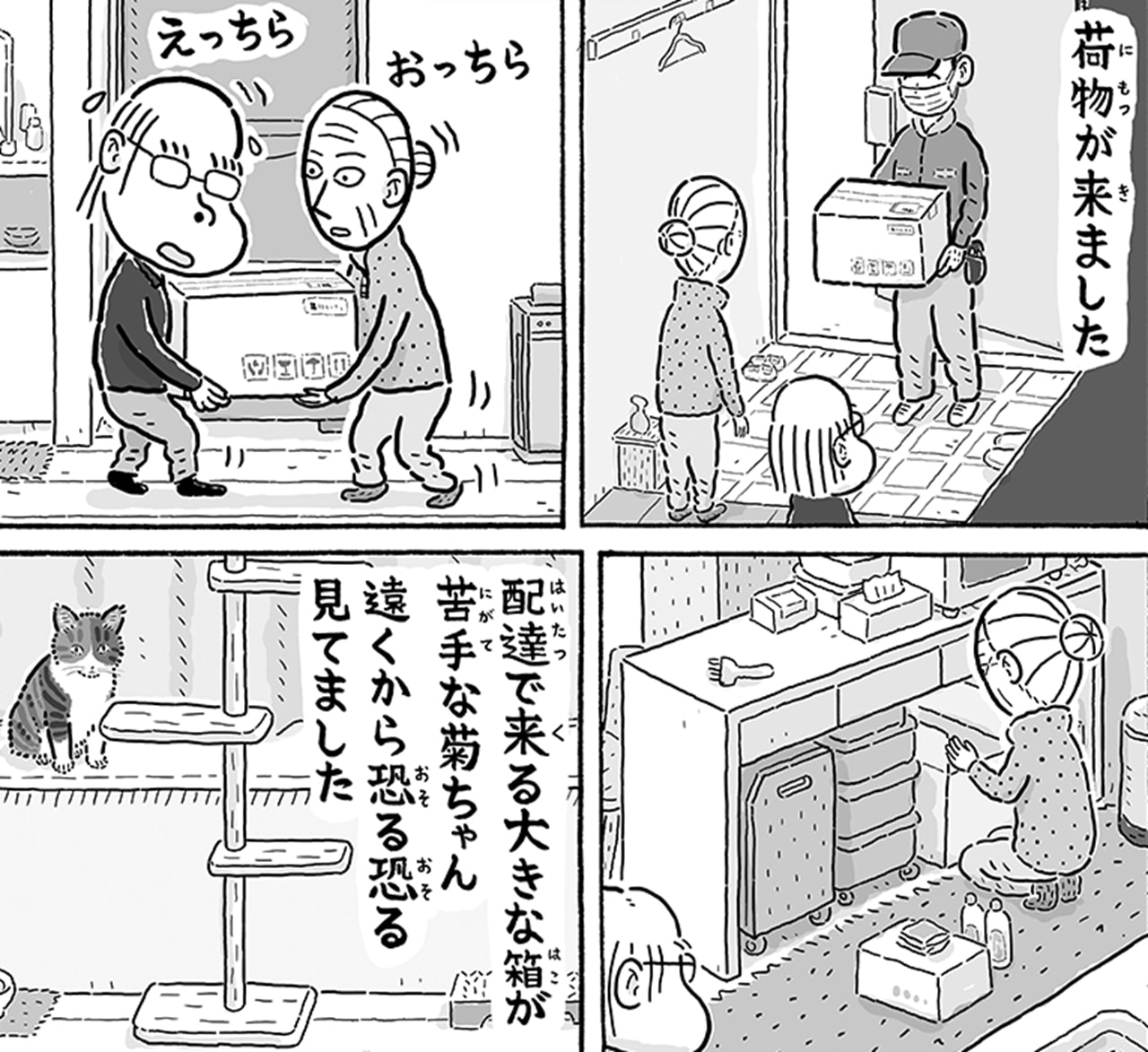 心強いお供!老夫婦と暮らすニャンコの日常漫画がホッコリする♪