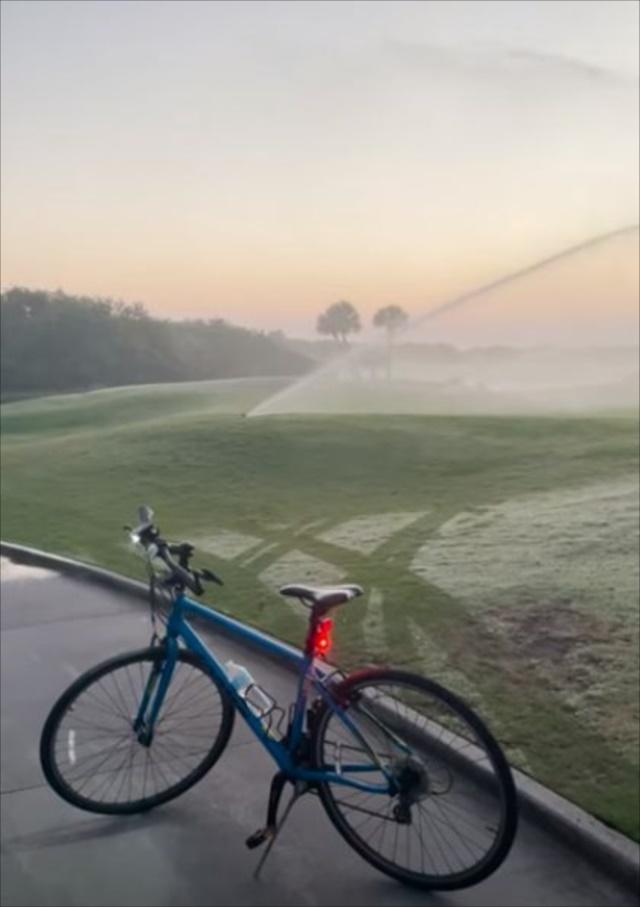 """日の出が美しいゴルフ場に現われた""""あの動物""""。意外にも癒される?エモーショナルな光景は必見!"""