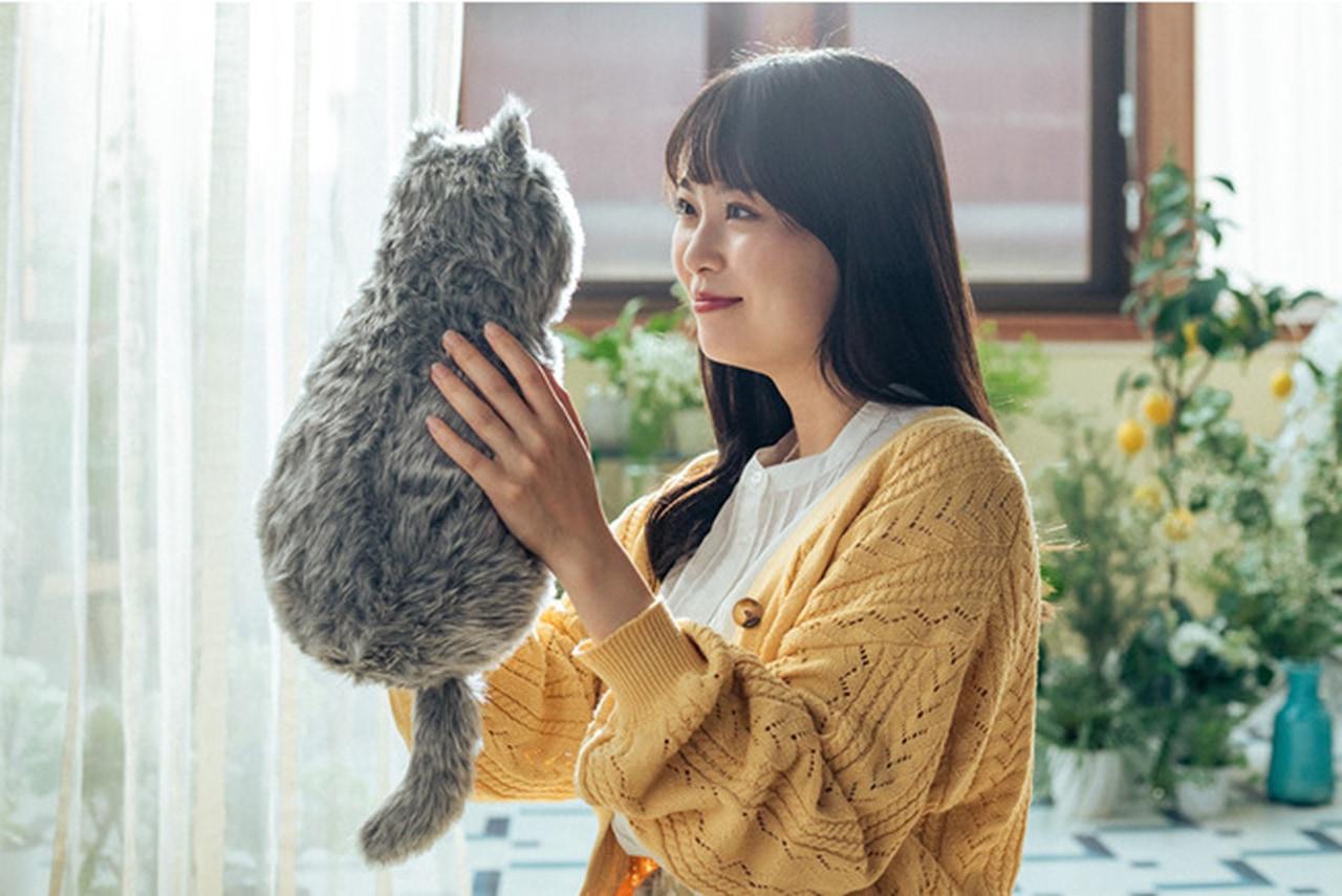 天才か?!猫を飼うのをあきらめていた人たち向けの『猫型クッション』がクラウドファンディングで大反響!