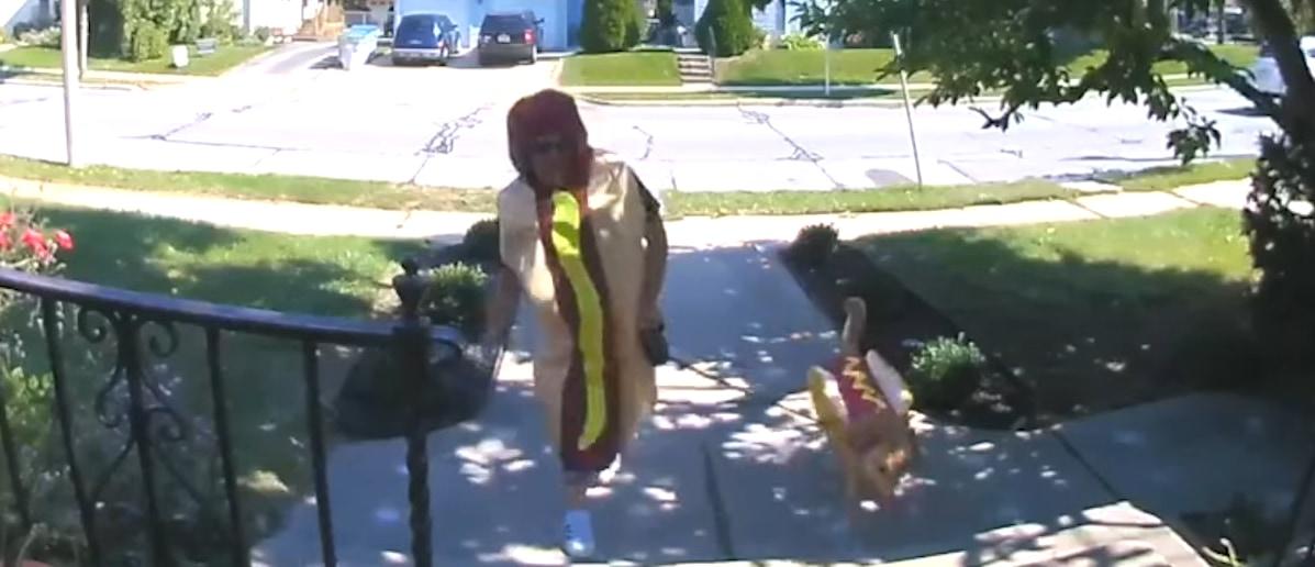 これがホントのホットドッグ?毎週金曜日はお揃いのコスチュームに身を包んで散歩に出るご近所さんとワンコ。