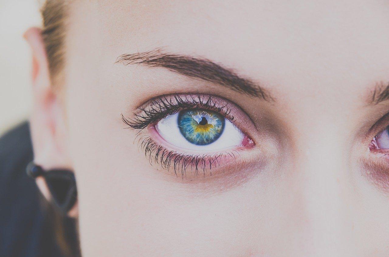 「柳眉」とはどんな眉毛の事?柳眉を含む熟語もご紹介