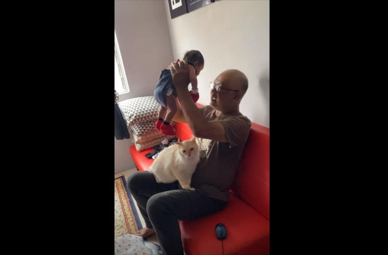 「かまってニャン!」赤ちゃんに嫉妬したニャンコがとった愛らしい行動とは!!
