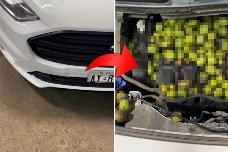 レッカーされた車のボンネットを開けたら・・・リスが大量の○○○を詰め込んでいました!