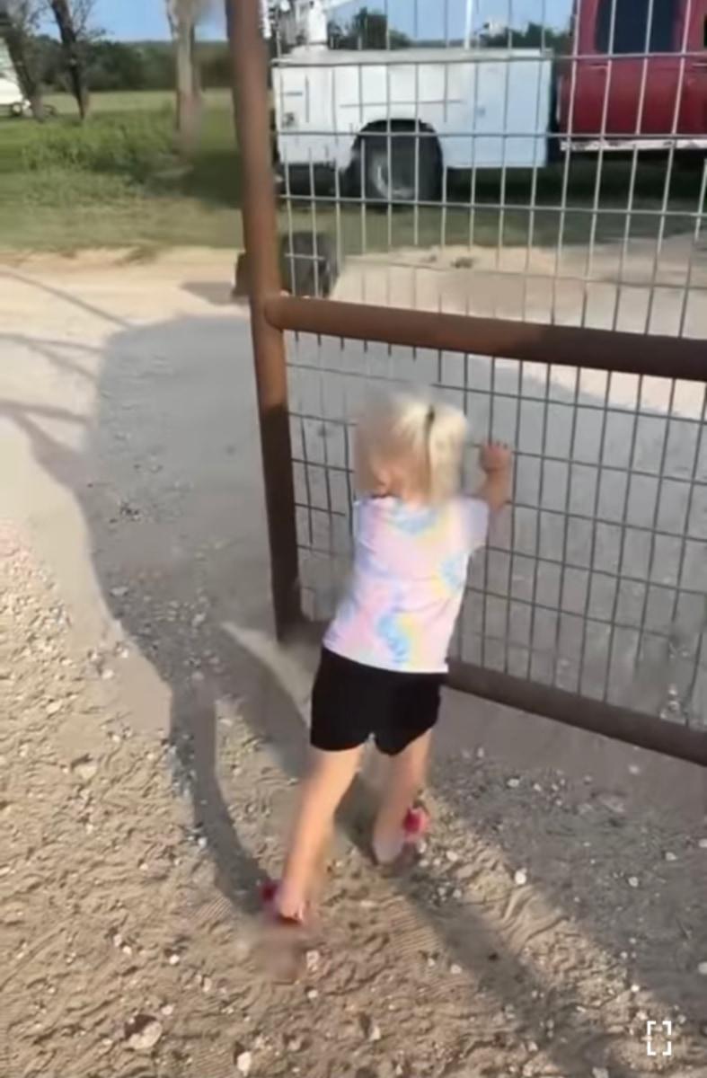 「早く中に入りなさ~い!」牧畜犬に代わってヤギたちを誘導のお手伝いをするのは、なんとまだ小さな女の子!